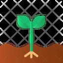 Spoil Plant Plant Nature Icon
