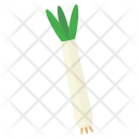 Spring Onion Vegetable Icon