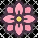 Spring Spring Flower Flower Icon