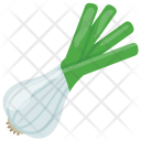 Spring Onion Raw Icon