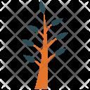 Spring plant Icon