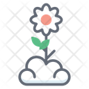 Flower Peony Flower Garden Flower Icon
