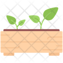 Sprout Seedling Box Icon