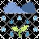 Rain Plant Environment Icon