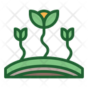 Sprout Plants Growth Icon