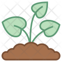Sprout Leaf Plant Icon