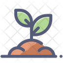 Sprout Grow Plant Icon