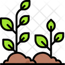 Sprout Icon
