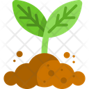 Sprout Leaf Natural Icon