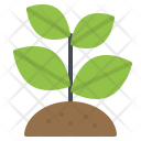 Sprout Tree Plant Icon
