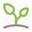 Sprout Herb Icon