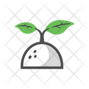 Sprout Growing Plant Icon