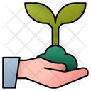 Sprout Ecology Tree Icon