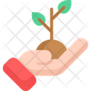 Sprout Plant Agriculture Icon