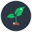 Plant Sapling Ecology Icon