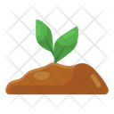 Plant Sprout Seed Growth Icon