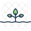 Sprout Seedling Ecology Icon