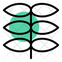 Sprout Growth Nature Icon