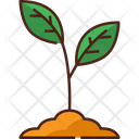 Sprout Plant Nature Icon