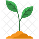 Sprout Plant Ecology Icon