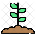 Sprout Plant Leaf Icon