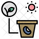 Sprout Seed Light Icon