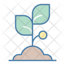 Sprout Plant Grow Icon