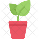 Sprout Pot Pack Symbol Icon