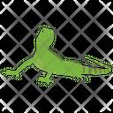 Squamata Icon