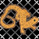 Squamata Reptile Geckos Icon