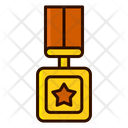 Square medal Icon