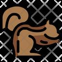 Squirrel Animal Sciuridae Icon