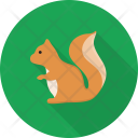 Squirrel Animal Herbivores Icon