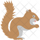 Squirrel Animal Forest Icon