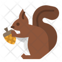 Squirrel Animal Rodent Icon