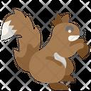 Squirrel Mammal Wildlife Icon