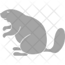 Squirrel Sciuridae Rodents Icon