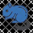 Squirrel Prairie Zoo Icon