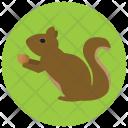 Squirrel Animal Icon