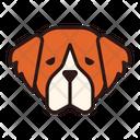 St Bernard Dog Puppy Icon