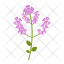 Wildflowers Flowers Plant Icon