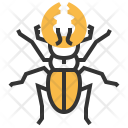 Stag Beetle Insect Icon