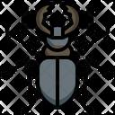 Stag Beetle Beetle Animal Kingdom Icon