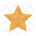 Star Decoration Christmas Icon