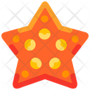 Star Beach Animal Icon