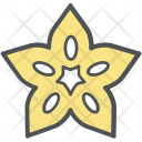 Star Fruit Fish Icon