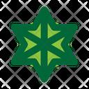 Star Astrology Zodiac Icon