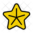 Star Fish Seafood Icon