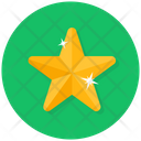 Star Star Ornament Christmas Decoration Icon