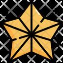 Star Christmas Xmas Icon